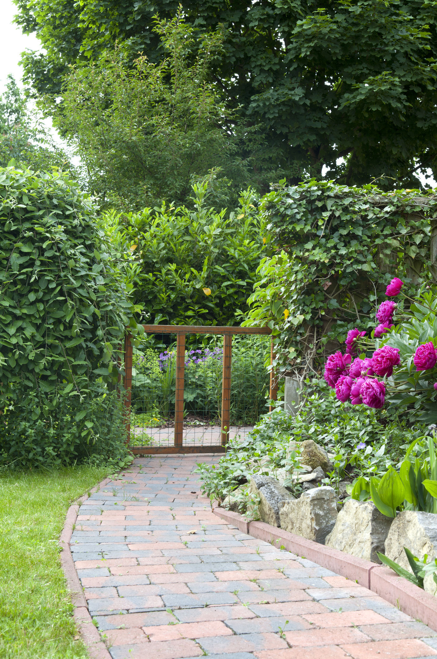 Is your garden path a step in the right direction?