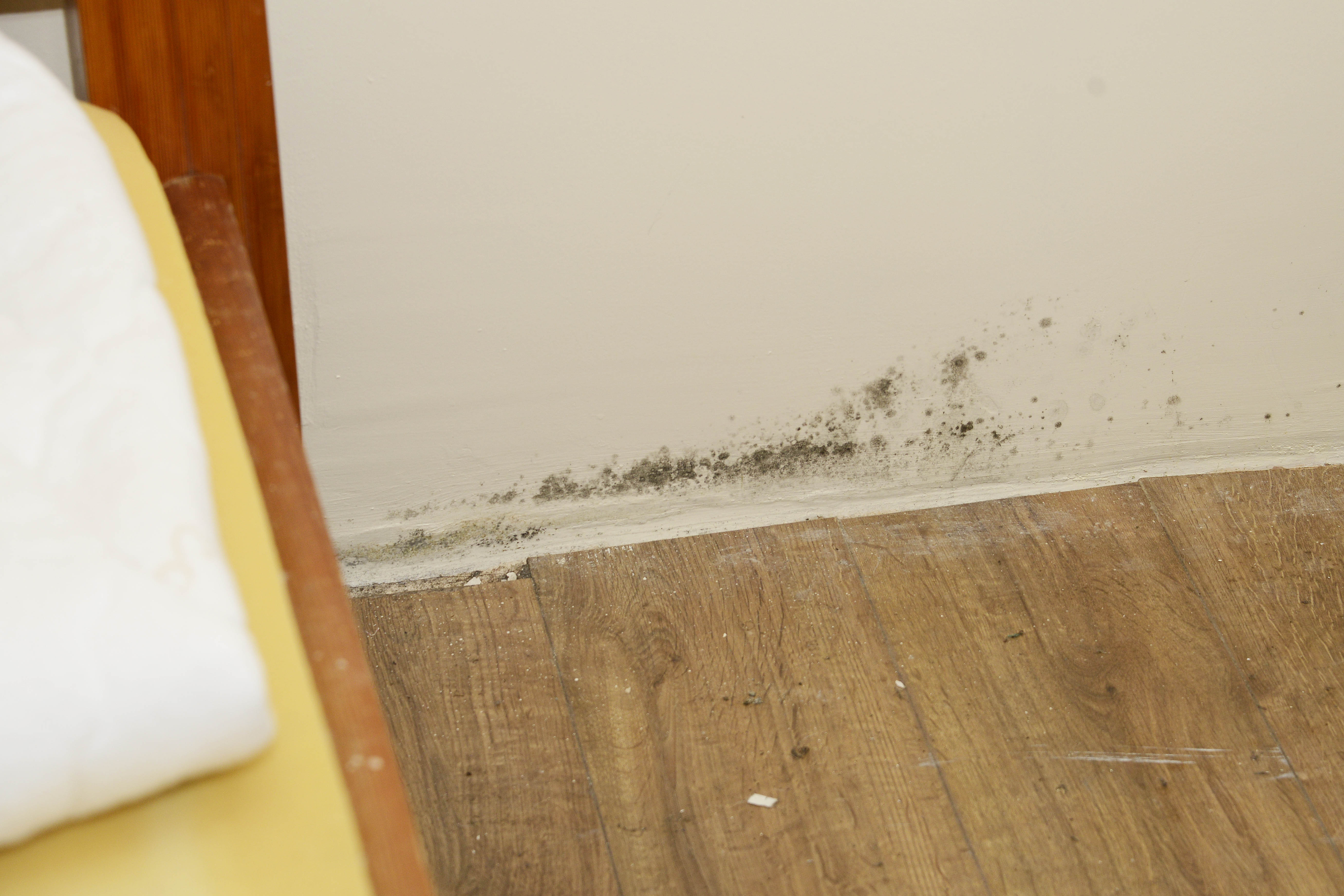 Damp occurs when ground water travels upwards through porous building materials such as brick, sandstone or mortar.