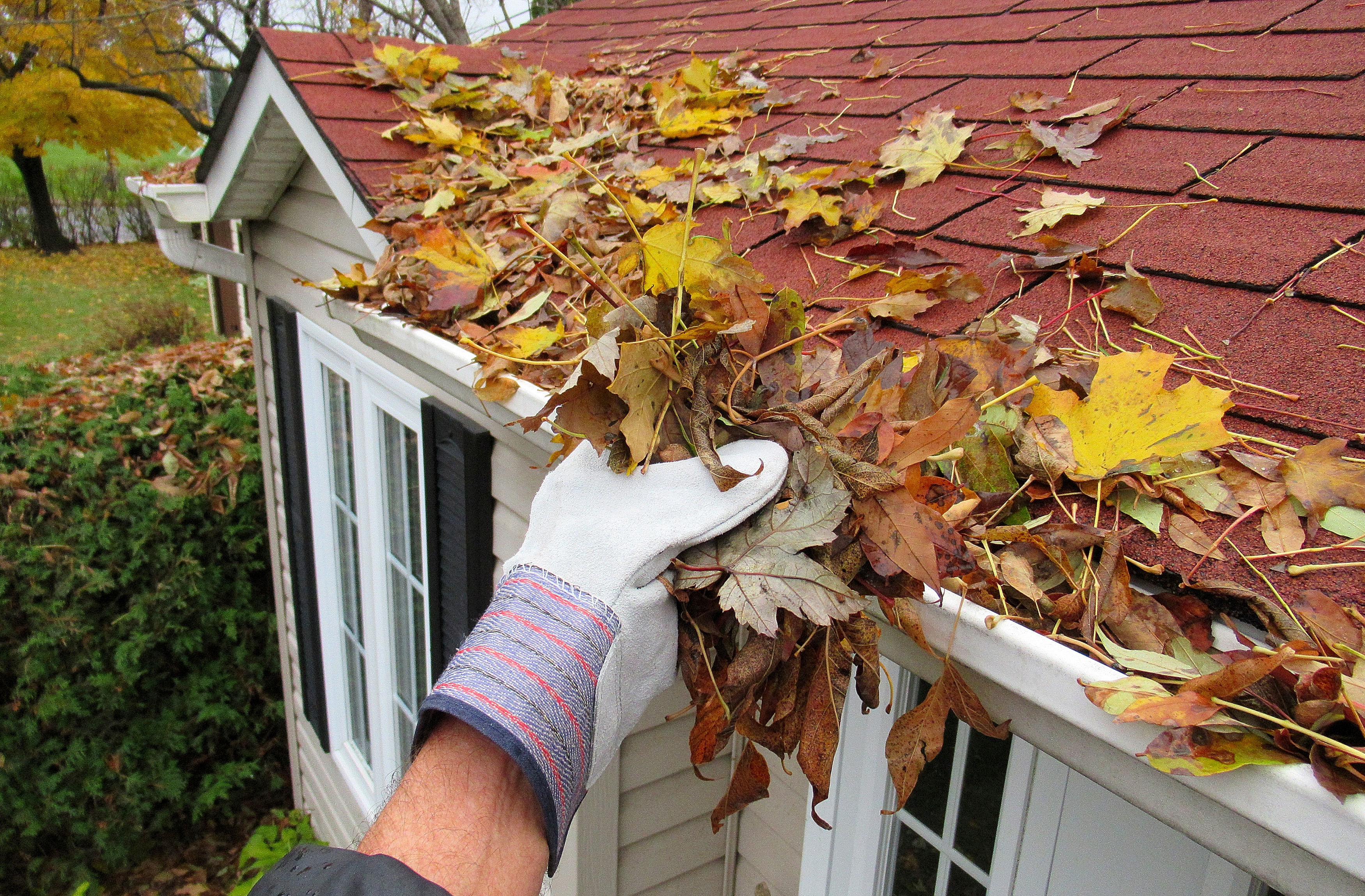 Gutters that are clogged with leaves and debris can cause a lot of issues.